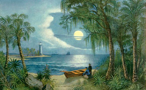 Antique munir og saga Flórida